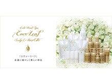 【大人気のヘッドスパ】エイジングトータルヘッドエステ(60分)完全個室 ¥10,800