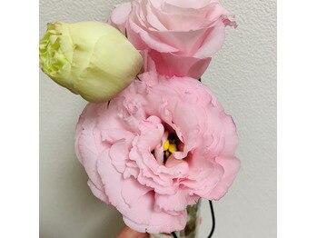 お花、買いました!