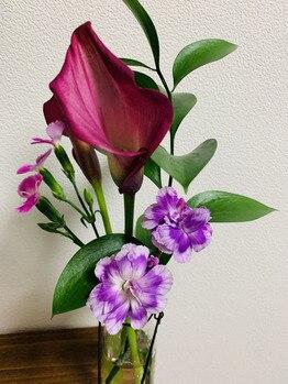 お花を買いました!第3弾